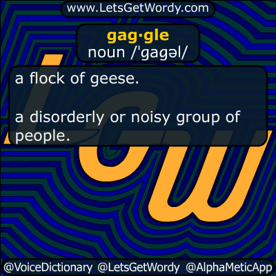 gaggle 02/27/2017 GFX Definition
