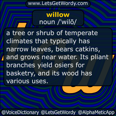 willow 08/10/2015 GFX Definition