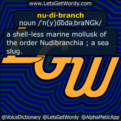 Nudibranchia 12/06/2016 GFX Definition