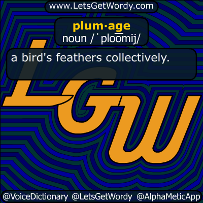 plumage 10/12/2019 GFX Definition